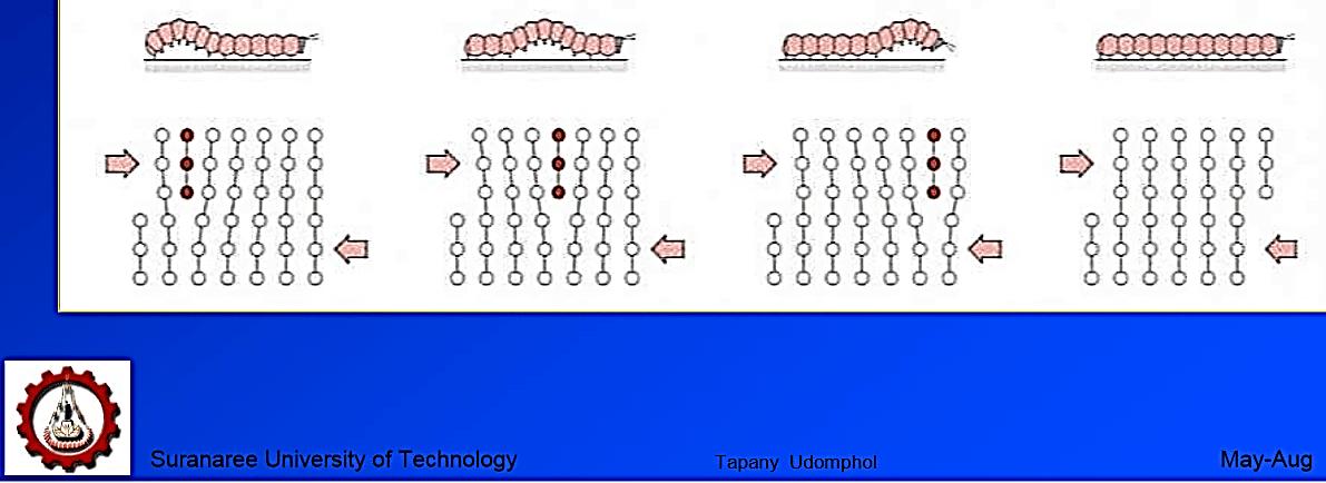 elasticiteit en plasticiteit rups-mechanisme